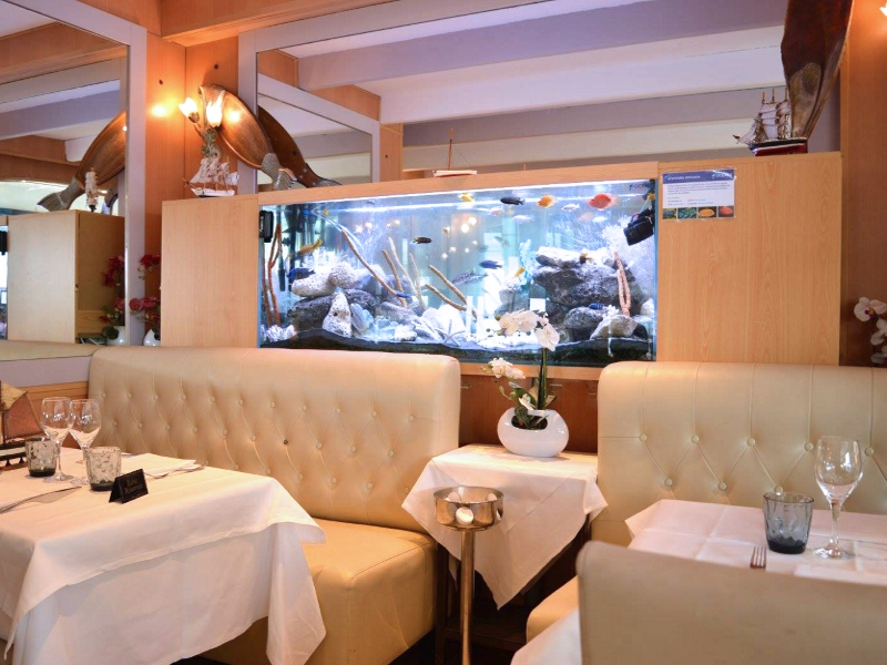 meuble aquarium restaurant
