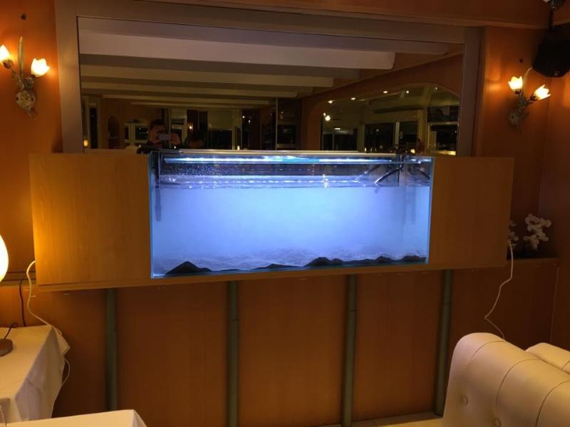 restaurant avec aquarium