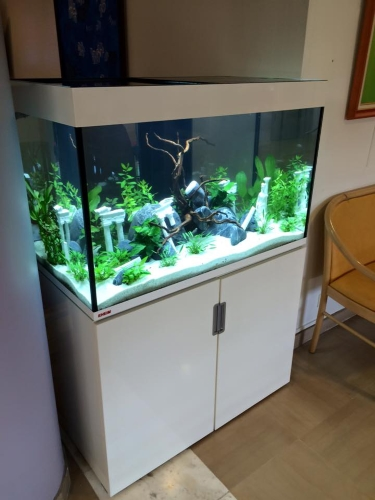 aquarium meuble blanc