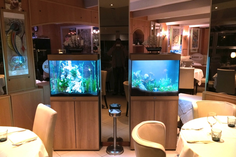 double aquarium