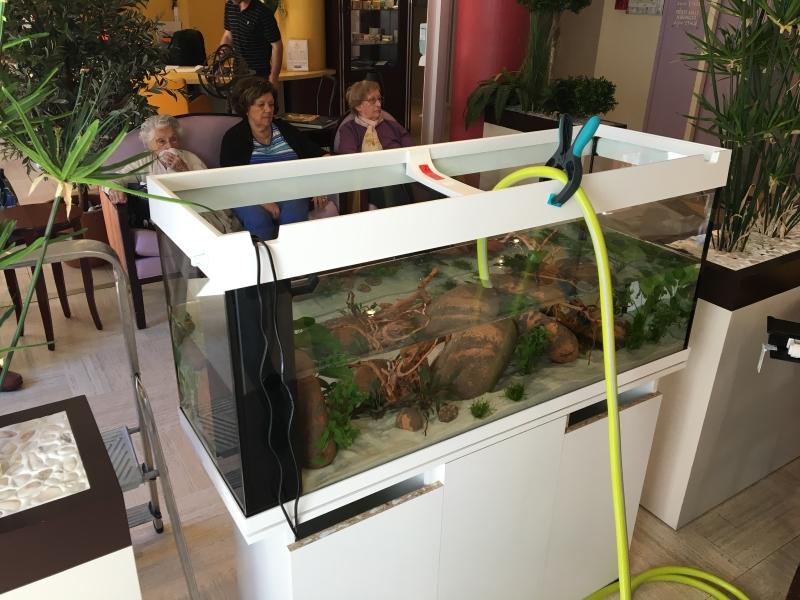 mise en eau aquarium