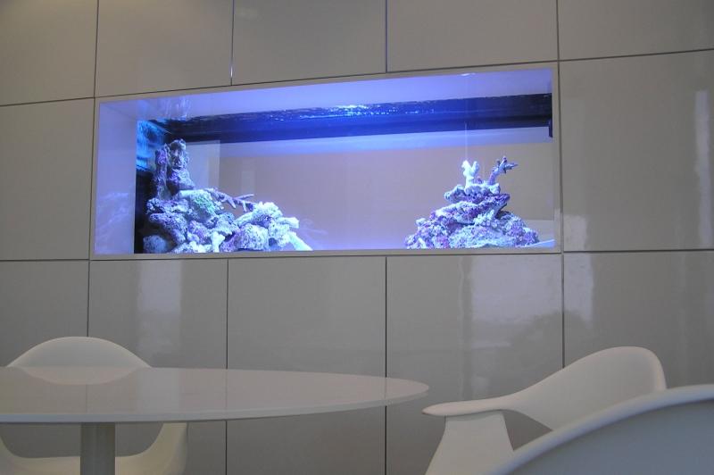 Aquarium encastré