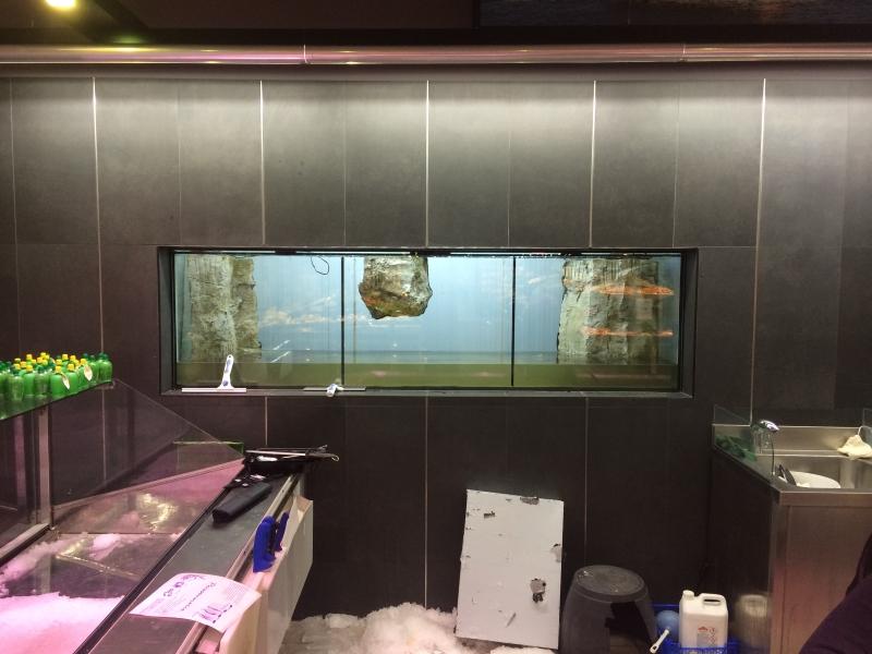 aquarium intermarché